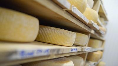 Durante el 2017 Argentina fue el principal proveedor de lácteos a Brasil