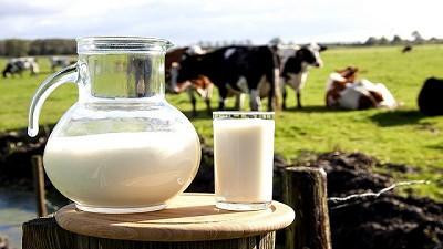 Las tendencias del mercado lácteo para 2018