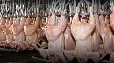 Las cadenas avícola y harinera, las próximas a inspeccionar