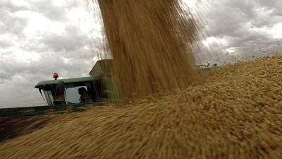 El sector agrícola tiene granos sin vender por US$6.500 millones