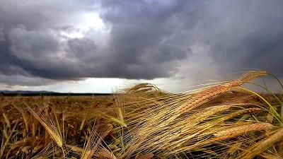 La inestabilidad atmosférica será crítica en la gruesa - GEA - BCR