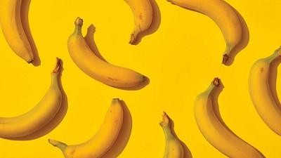 El plátano está muriendo: La carrera por salvar a la fruta más popular del mundo