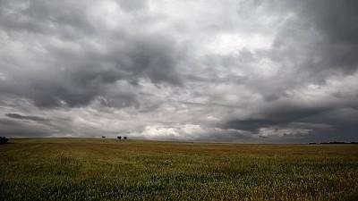 Registro de lluvias recopiladas en la mañana del 11 de diciembre