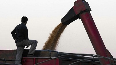 SISA: los productores deben cargar sus datos este mes para la cosecha gruesa
