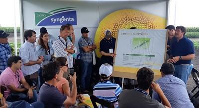 Syngenta presentó su potencial tecnológico en girasol, maíz y soja