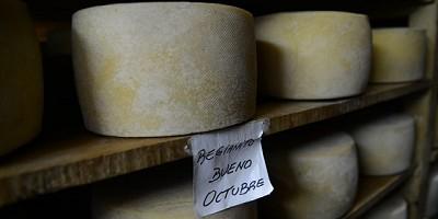 Se aprobó incorporar establecimientos lácteos de elaboración artesanal al Código Alimentario