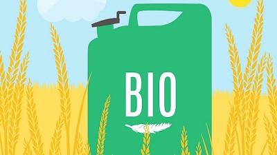 La situación del biodiésel va en picada