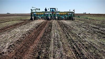 Lluvias: el barro podría ponerle límites al trigo