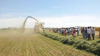 En Ameghino, todo apunta a mejorar la eficiencia