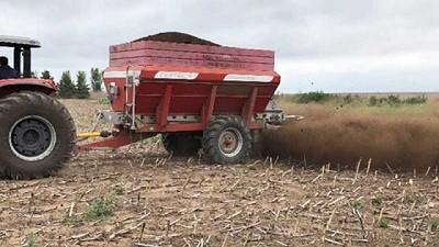 Cómo responde el maíz al compost de estiércol bovino y vinaza