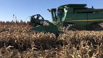 Se mantiene el adelanto en la cosecha y en la siembra en toda el área agrícola