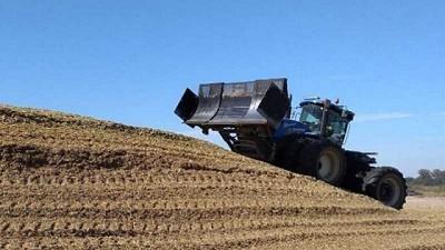 El silo de maíz, herramienta central de la producción lechera
