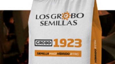 Grupo Los Grobo presenta su primer maíz de marca propia