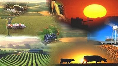 """Se presentó el documento """"Estrategia de Reactivación Agroindustrial Exportadora Inclusiva, Sustentable y Federal. Plan 2020-2030"""""""