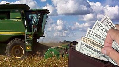 Economía, situación mundial y producción agropecuaria