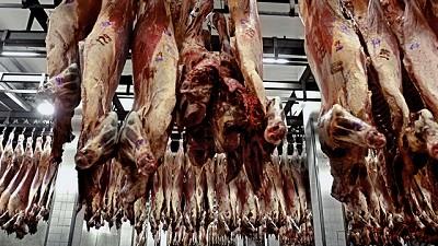 Advierten que pese al alto nivel de faena, los frigoríficos tienen pérdidas económicas