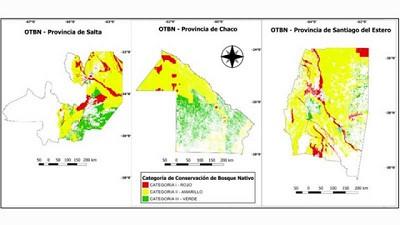 Investigan las causas detrás de los desmontes ilegales en el Chaco Seco argentino