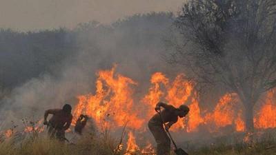 Agricultura declara el estado de desastre agropecuario en Córdoba por los incendios