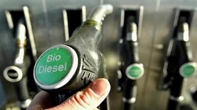 Golpeada por la crisis del mercado energético, la producción de biodiesel en Argentina cae a un mínimo en 10 años