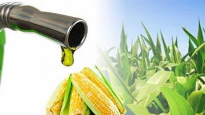 El caso argentino es protagonista en un encuentro internacional sobre biocombustibles