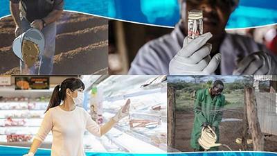 FAO: la resistencia a los antimicrobianos puede afectar la vida y el bienestar de millones de personas