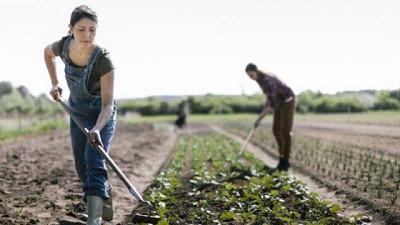 Mujeres rurales costarricenses desarrollan tecnologías para aumentar la sostenibilidad de las actividades productivas en sus comunidades