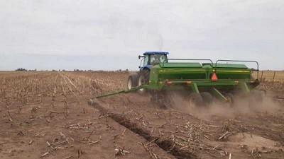 Llovió, pero solo pudo sembrarse 500 mil ha con soja