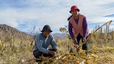 Naciones Unidas presentará nuevo informe sobre la seguridad alimentaria y nutricional de América Latina y el Caribe