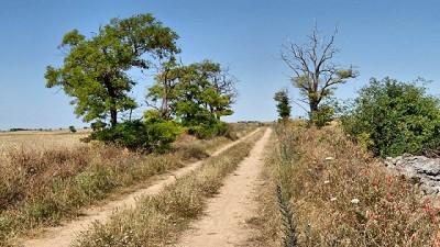 Será dura la transicion interanual – CCA/Agrositio