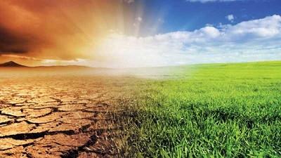 Estudio encuentra que el cambio climático está alterando la vida microbiana en los suelos
