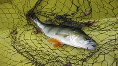 El Ministerio de Desarrollo Agrario anunci� un aumento del 160% para el Fondo Pesquero 2021