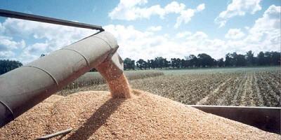 La liquidación de divisas de agroexportaciones alcanzó US$ 1.810 millones