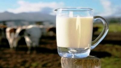 Venta de lácteos en supermercados