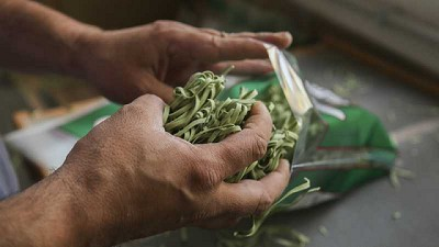 Agricultura abrió la convocatoria del Programa Nacional
