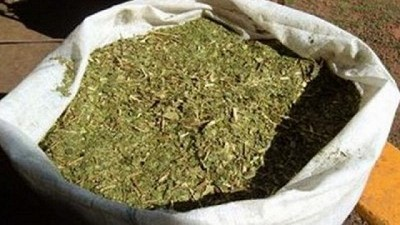 La Argentina logr� la apertura del mercado de yerba mate a India