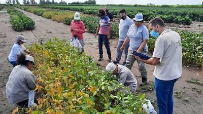 El RENATRE Santa Fe Sur aumentó las fiscalizaciones durante la pandemia en busca de regularizar el trabajo rural
