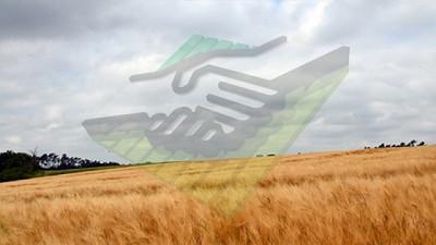 Sigue húmedo pero libre de lluvias – CCA/Agrositio