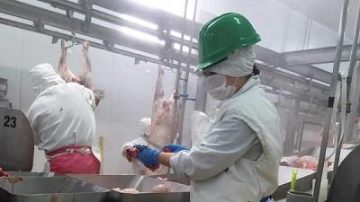 Agricultura suspendió a 15  exportadoras de carne por evadir controles del Estado