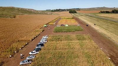 Toda la tecnología para maíz y soja en Expo Nutrien - STINE 2021