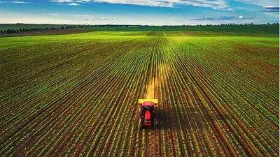 Sector Agroalimentario se enfrenta a diversos desafíos económicos en 2021