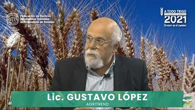 Perspectivas de los mercados de trigo