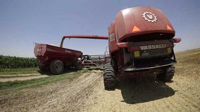 Vassalli evidencia menor pérdida de grano con sus cosechadoras