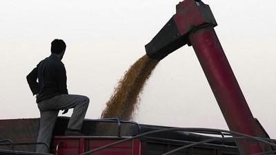 Fuerte caída en la confianza de los productores agropecuarios locales