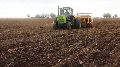 Un millón de hectáreas de trigo sembradas en la región núcleo