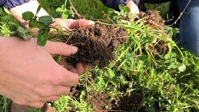 Para INTA la agroecología es una opción competitiva y sostenible