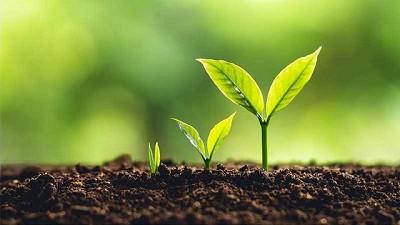 Expertos entregan desafíos de los agronegocios para lograr cero emisiones de gases de efecto invernadero