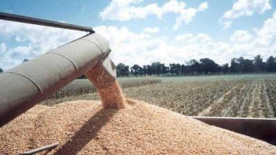 Se publicó el informe del USDA con valores de la cosecha norteamericana en torno a lo esperado