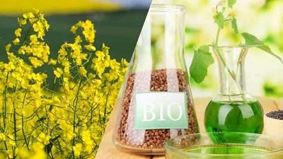 IICA publicó el Atlas de los biocombustibles líquidos 2020-2021