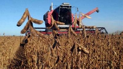 Apuntar a una producción de 70 millones de toneladas de soja