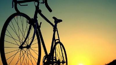 El juego de contrastes, �regalar bicicletas, � trabajar como el campo?; por Ricardo Bindi